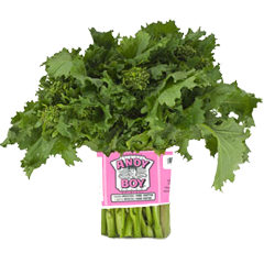 broccoli-rabe-andy-boy