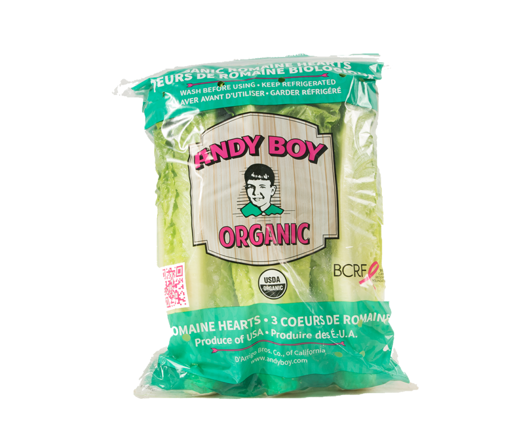 organic-heart-12-3-andy-boy