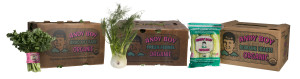 organic-broccoli-rabe-fennel-hearts-products-outside-box