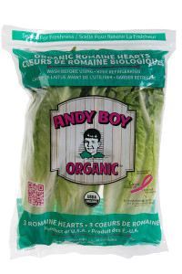 andy-boy-organic-hearts-bag