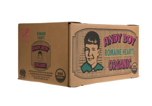 organic-heart-12-3-hearts-box