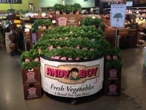 broccoli-rabe-albany-ny