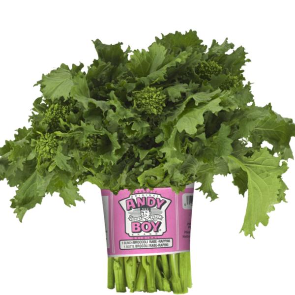 Broccoli-Rabe-800x800v2